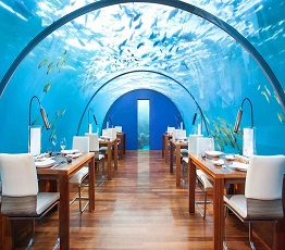 Setting Up an Underwater Restaurant, an attractive and creative idea