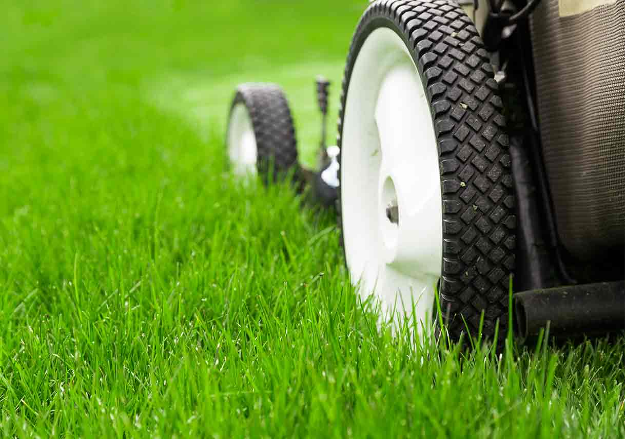 Lawn Care Services, A Fun and Joyful Business Idea